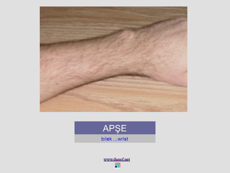 www.danef.net ANTEĞUP dirsek çıkıntısı...elbow