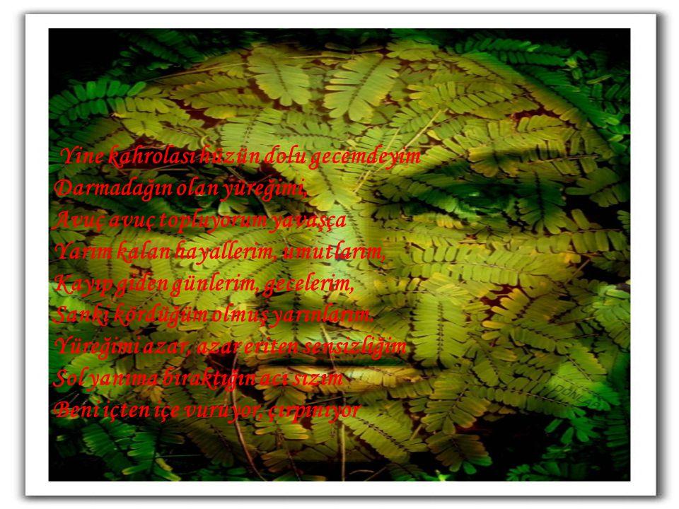 Yalnızlık Çemberi Ruhumu Sardı şiir : Zeynep Eroğlu