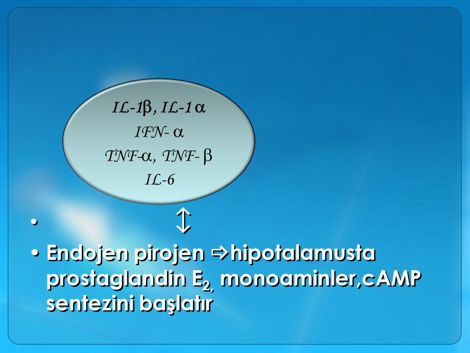  Endojen pirojen  hipotalamusta prostaglandin E 2, monoaminler,cAMP sentezini başlatır  Endojen pirojen  hipotalamusta prostaglandin E 2, monoaminler,cAMP sentezini başlatır IL-1 , IL-1  IFN-  TNF- , TNF-  IL-6