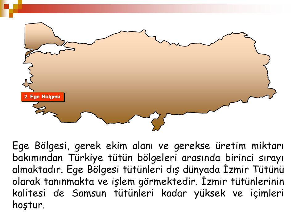 2. Ege Bölgesi Ege Bölgesi, gerek ekim alanı ve gerekse üretim miktarı bakımından Türkiye tütün bölgeleri arasında birinci sırayı almaktadır. Ege Bölg