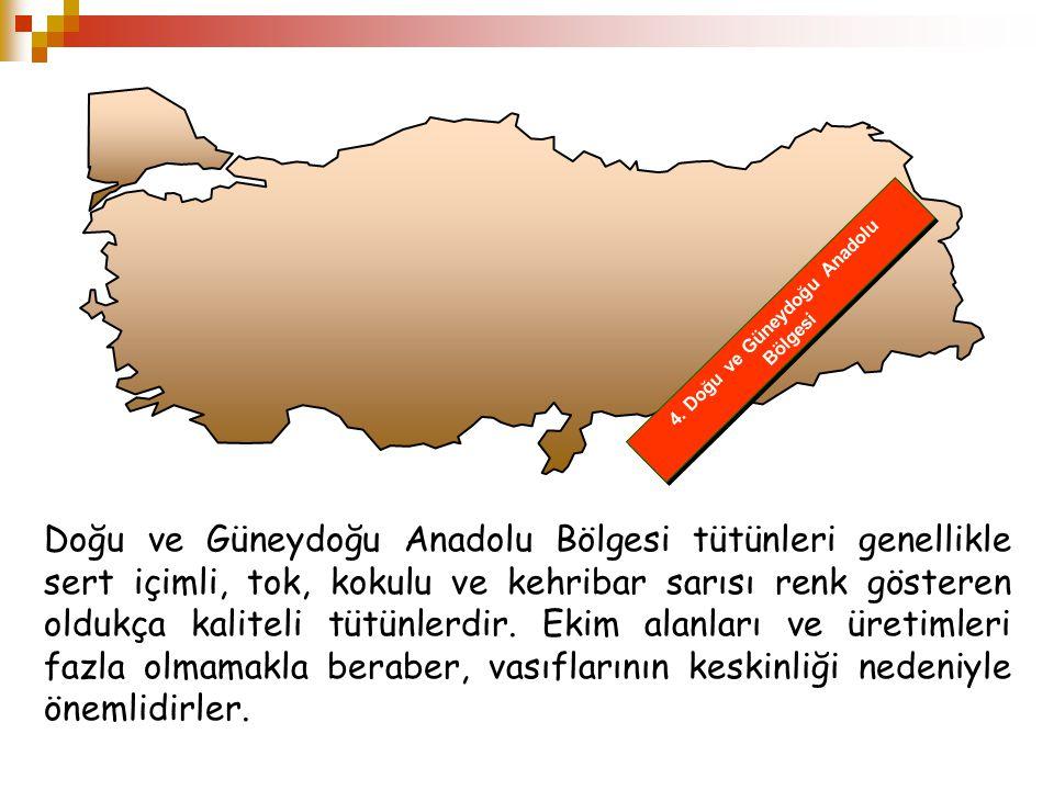 4. Doğu ve Güneydoğu Anadolu Bölgesi Doğu ve Güneydoğu Anadolu Bölgesi tütünleri genellikle sert içimli, tok, kokulu ve kehribar sarısı renk gösteren