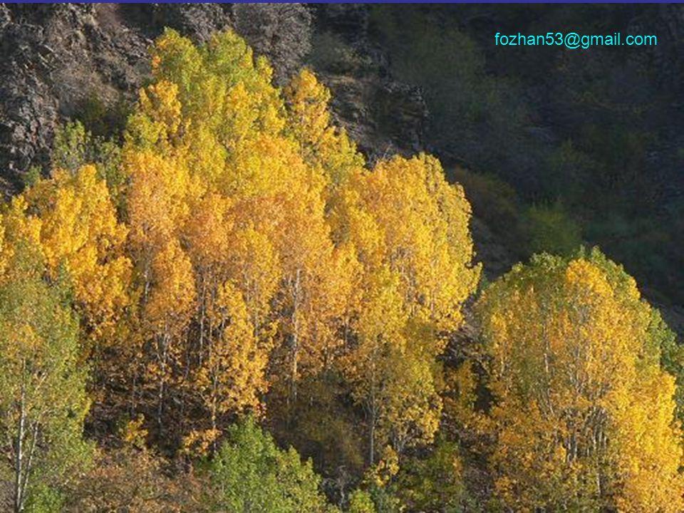 Bu renkleri doğal ortamlarında seyrederken keyif almak isterseniz, bu sıralar tam zamanıdır.