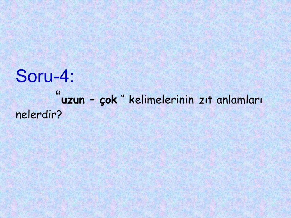 Soru-14: Aşağıdaki sözcüklerden hangisi doğru yazılmıştır? A) yanlız B) yanlış C) gaste