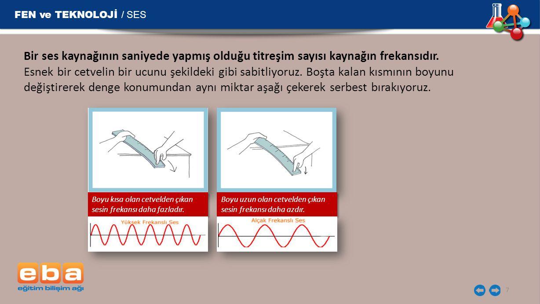 FEN ve TEKNOLOJİ / SES 7 Bir ses kaynağının saniyede yapmış olduğu titreşim sayısı kaynağın frekansıdır. Esnek bir cetvelin bir ucunu şekildeki gibi s