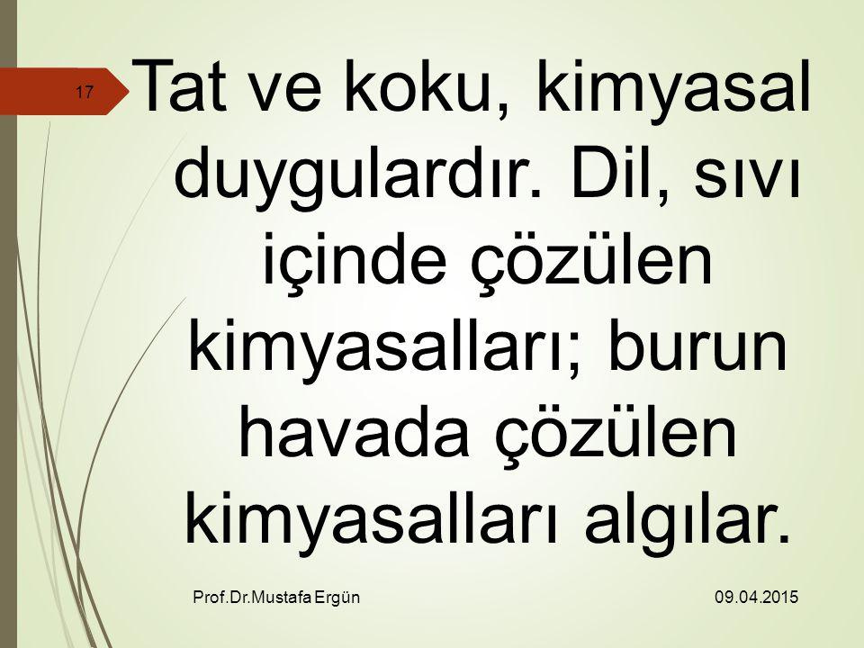 09.04.2015 Prof.Dr.Mustafa Ergün 17 Tat ve koku, kimyasal duygulardır.