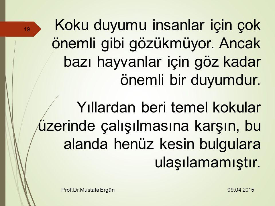 09.04.2015 Prof.Dr.Mustafa Ergün 19 Koku duyumu insanlar için çok önemli gibi gözükmüyor.