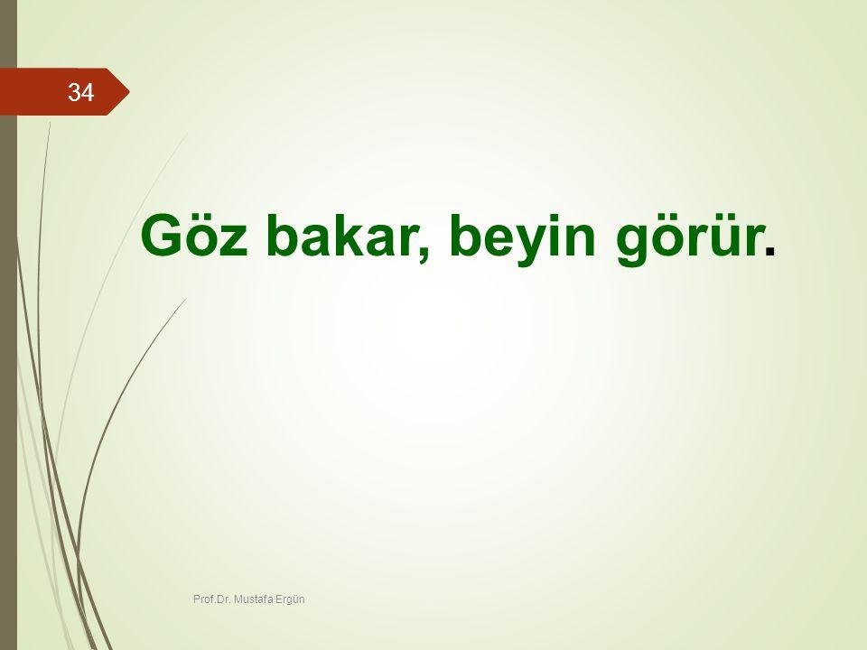 Prof.Dr. Mustafa Ergün 34 Göz bakar, beyin görür.