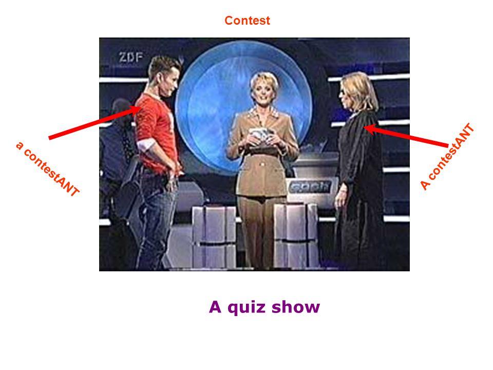 A quiz show Contest a contestANT A contestANT