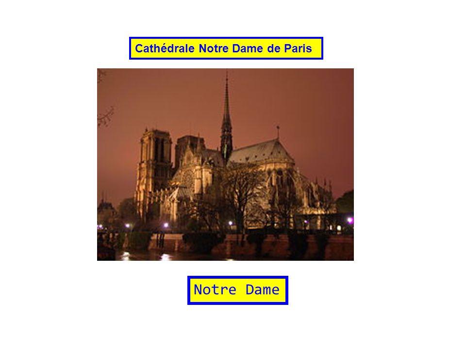 Notre Dame Cathédrale Notre Dame de Paris