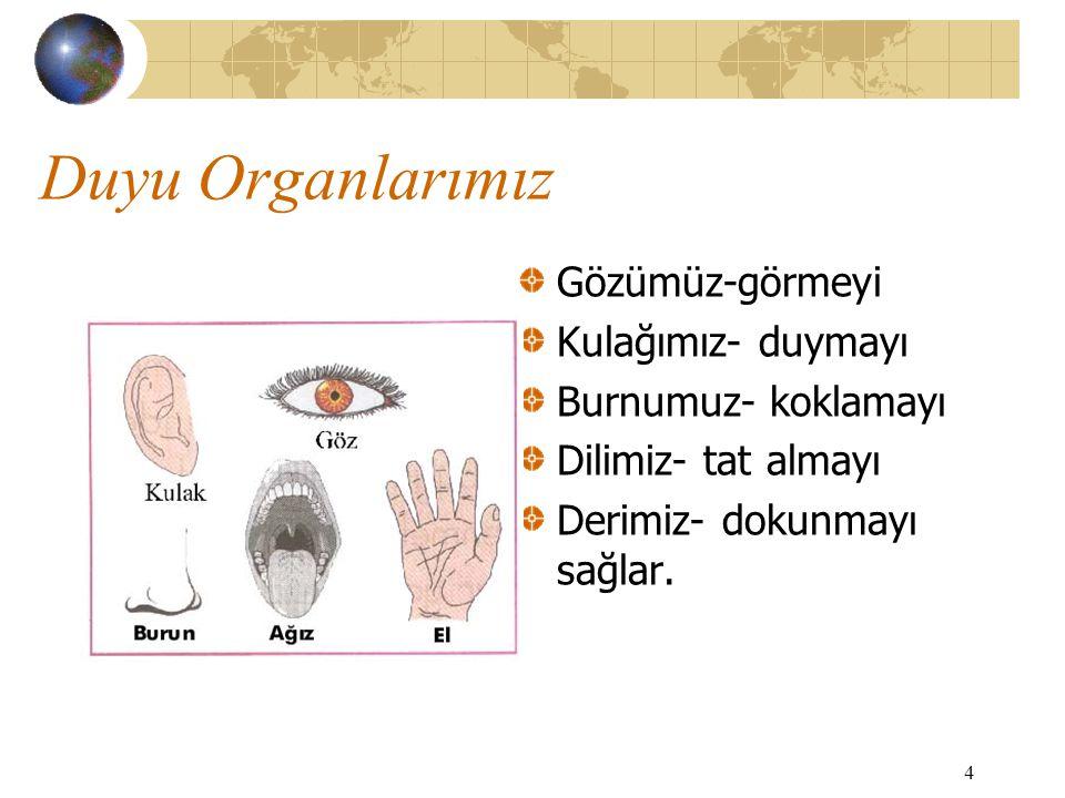 4 Duyu Organlarımız Gözümüz-görmeyi Kulağımız- duymayı Burnumuz- koklamayı Dilimiz- tat almayı Derimiz- dokunmayı sağlar.