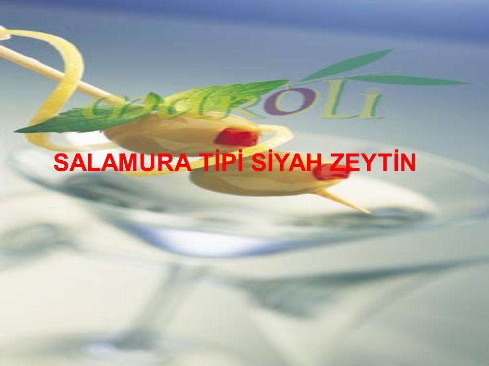 SALAMURA TİPİ SİYAH ZEYTİN