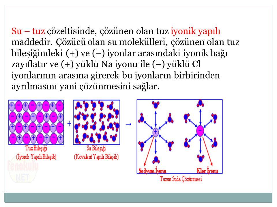 Su – tuz çözeltisinde, çözünen olan tuz iyonik yapılı maddedir. Çözücü olan su molekülleri, çözünen olan tuz bileşiğindeki (+) ve (–) iyonlar arasında