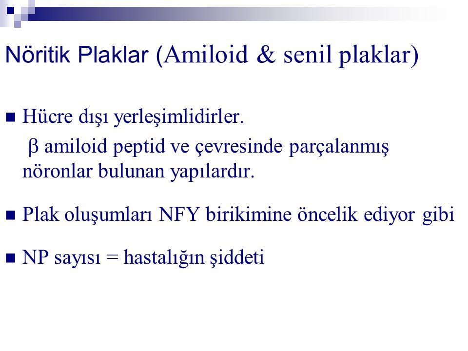 Nöritik Plaklar ( Amiloid & senil plaklar) Hücre dışı yerleşimlidirler.