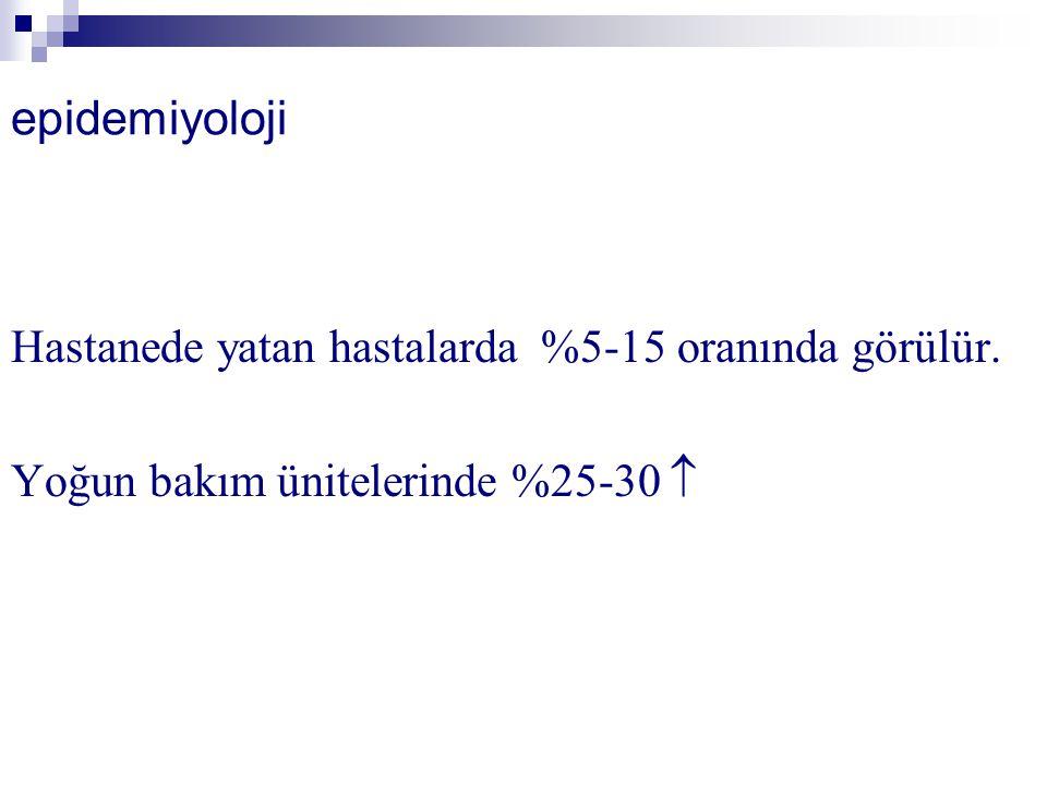 Demansla ilgili romanlar  Karanlığın günü.Leyla Erbil, 1999.