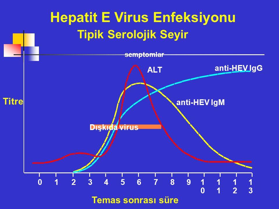 semptomlar ALT anti-HEV IgG anti-HEV IgM Dışkıda virus 012345678910101 1212 1313 Hepatit E Virus Enfeksiyonu Tipik Serolojik Seyir Titre Temas sonrası süre