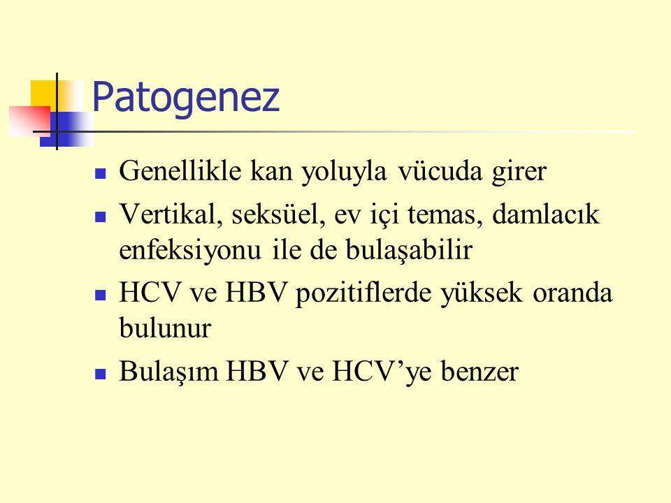 Patogenez Genellikle kan yoluyla vücuda girer Vertikal, seksüel, ev içi temas, damlacık enfeksiyonu ile de bulaşabilir HCV ve HBV pozitiflerde yüksek oranda bulunur Bulaşım HBV ve HCV'ye benzer
