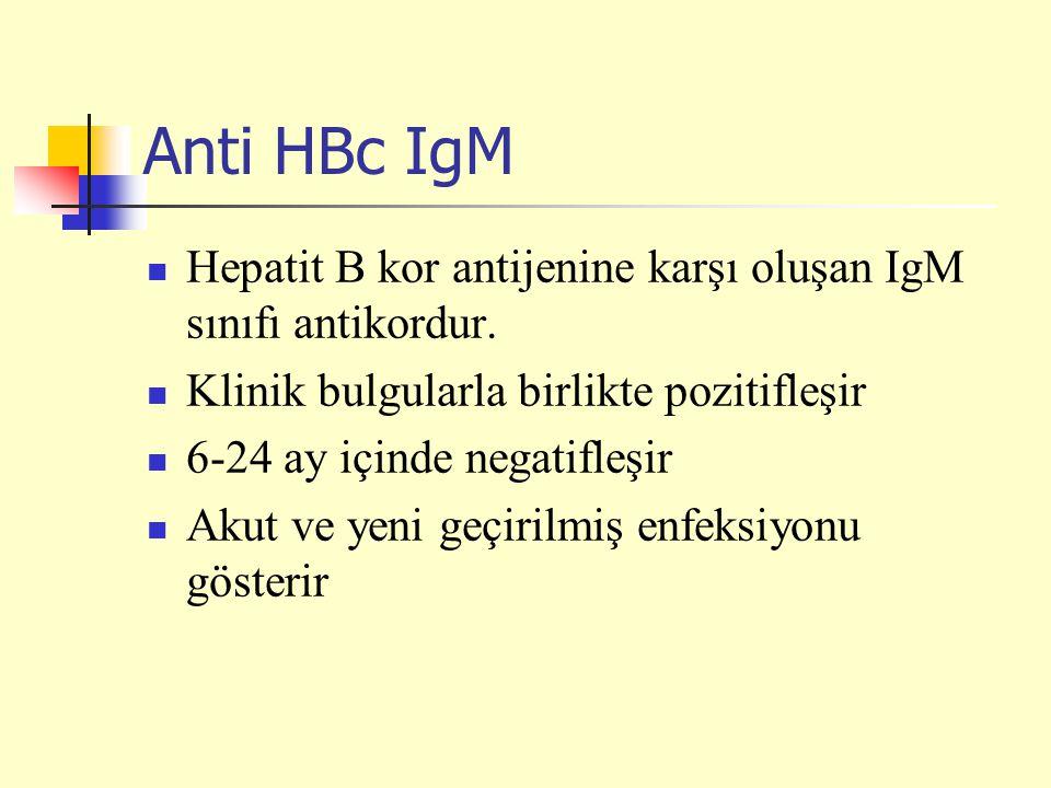 Anti HBc IgM Hepatit B kor antijenine karşı oluşan IgM sınıfı antikordur. Klinik bulgularla birlikte pozitifleşir 6-24 ay içinde negatifleşir Akut ve