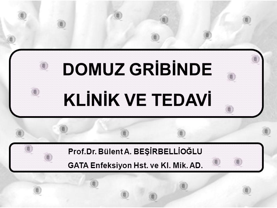 DOMUZ GRİBİNDE KLİNİK VE TEDAVİ Prof.Dr. Bülent A. BEŞİRBELLİOĞLU GATA Enfeksiyon Hst. ve Kl. Mik. AD.