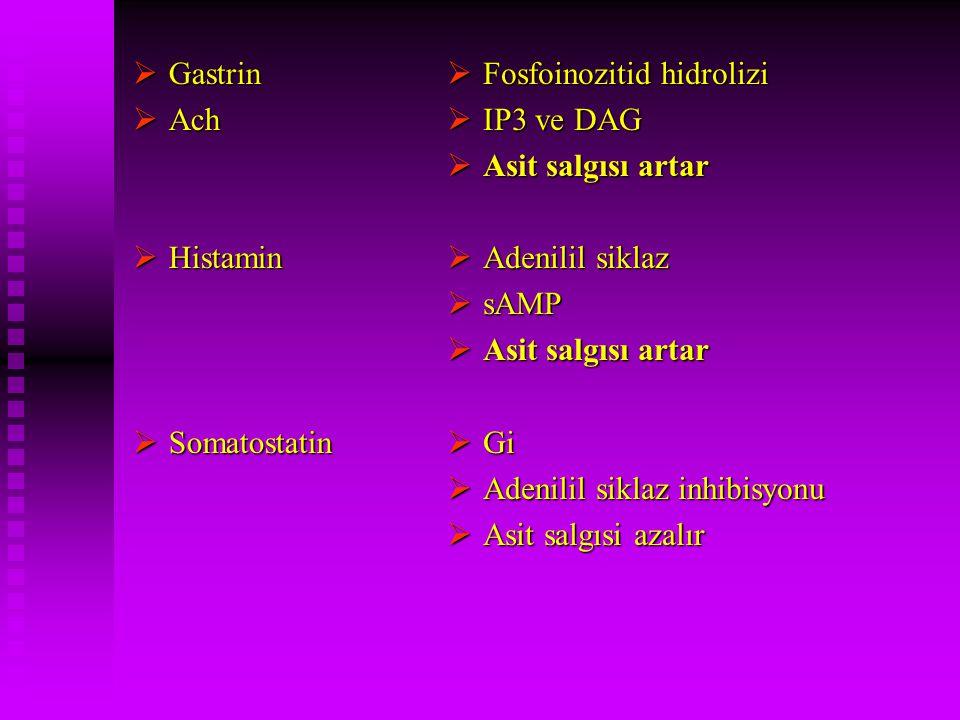  Gastrin  Ach  Histamin  Somatostatin  Fosfoinozitid hidrolizi  IP3 ve DAG  Asit salgısı artar  Adenilil siklaz  sAMP  Asit salgısı artar 