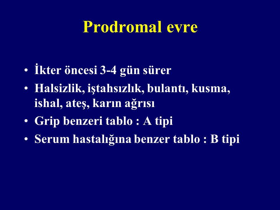 Prodromal evre İkter öncesi 3-4 gün sürer Halsizlik, iştahsızlık, bulantı, kusma, ishal, ateş, karın ağrısı Grip benzeri tablo : A tipi Serum hastalığ