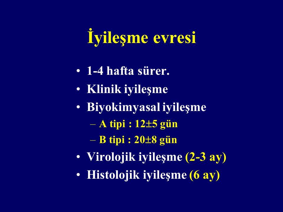 İyileşme evresi 1-4 hafta sürer. Klinik iyileşme Biyokimyasal iyileşme –A tipi : 12  5 gün –B tipi : 20  8 gün Virolojik iyileşme (2-3 ay) Histoloji