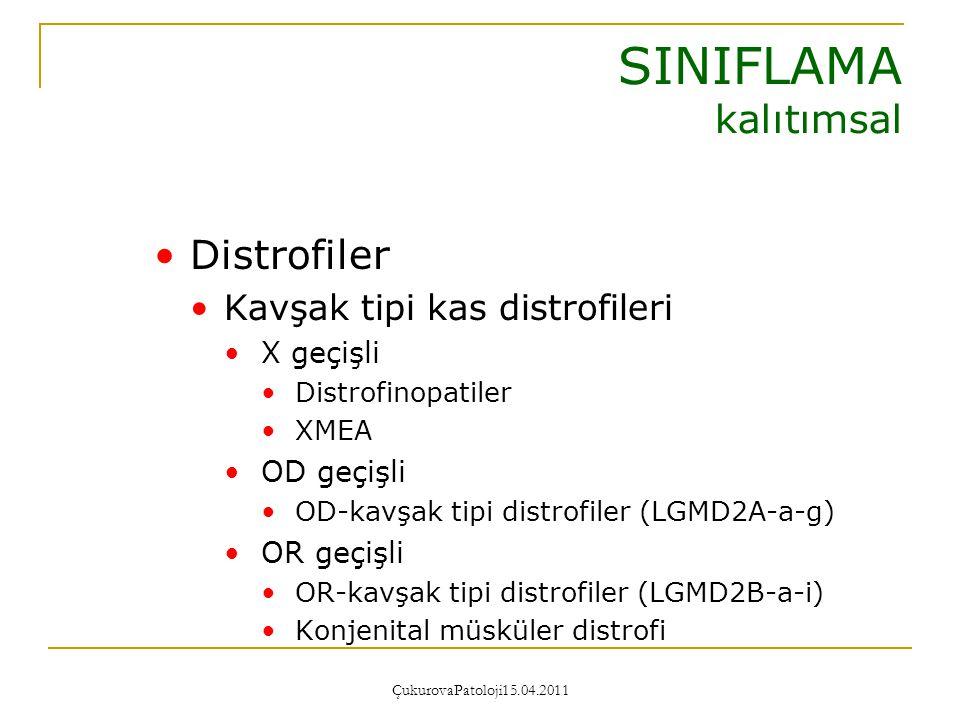 ÇukurovaPatoloji15.04.2011 Distrofiler Özgün zaaf dağılımı veya ek özellikler gösteren distrofiler Facioscapulohumeral distrofi (FSHD) Miyotonik distrofi (DM) Emery-Dreifuss kas distrofisi (EDMD) Okülofaringeal distrofi (OPMD) Bethlem miyopatisi Distal miyopatiler SINIFLAMA kalıtımsal