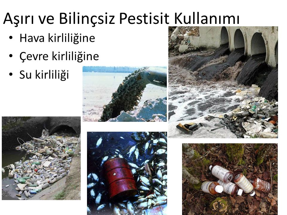 Aşırı ve Bilinçsiz Pestisit Kullanımı Hava kirliliğine Çevre kirliliğine Su kirliliği