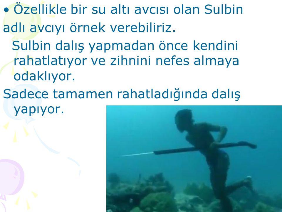 Özellikle bir su altı avcısı olan Sulbin adlı avcıyı örnek verebiliriz.