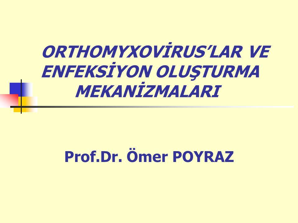 ORTHOMYXOVİRUS'LAR VE ENFEKSİYON OLUŞTURMA MEKANİZMALARI Prof.Dr. Ömer POYRAZ