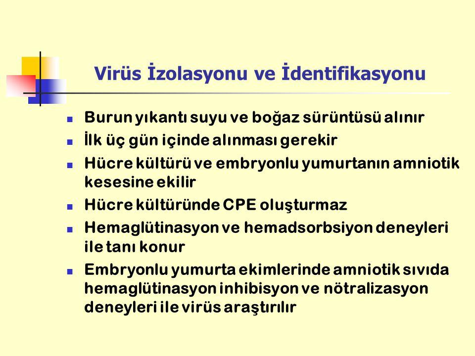Virüs İzolasyonu ve İdentifikasyonu Burun yıkantı suyu ve bo ğ az sürüntüsü alınır İ lk üç gün içinde alınması gerekir Hücre kültürü ve embryonlu yumu