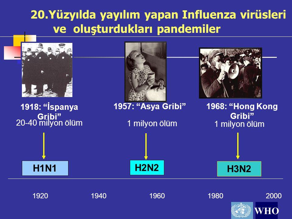 """20.Yüzyılda yayılım yapan Influenza virüsleri ve oluşturdukları pandemiler 19201940196019802000 H1N1 1918: """"İspanya Gribi"""" 20-40 milyon ölüm WHO H2N2"""