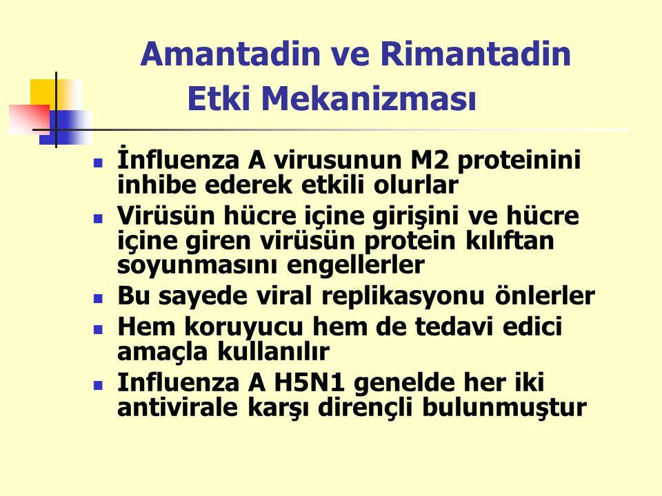 Amantadin ve Rimantadin Etki Mekanizması İnfluenza A virusunun M2 proteinini inhibe ederek etkili olurlar Virüsün hücre içine girişini ve hücre içine