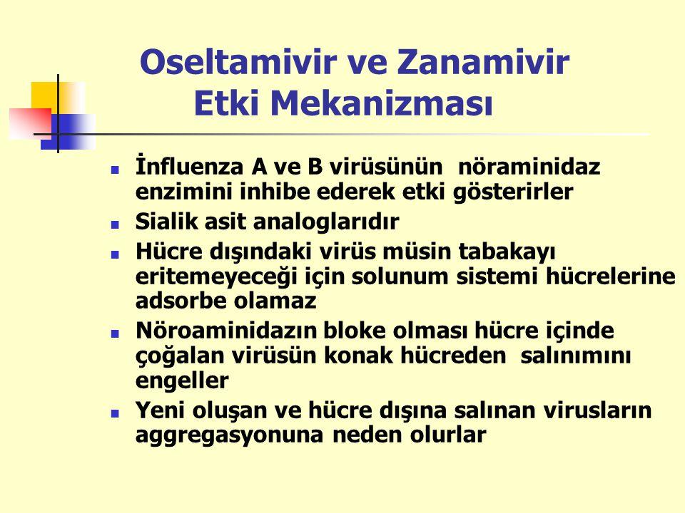 Oseltamivir ve Zanamivir Etki Mekanizması İnfluenza A ve B virüsünün nöraminidaz enzimini inhibe ederek etki gösterirler Sialik asit analoglarıdır Hüc