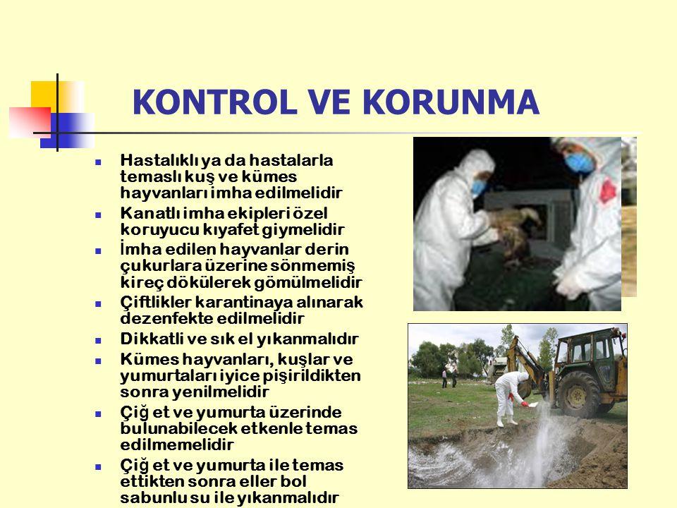 KONTROL VE KORUNMA Hastalıklı ya da hastalarla temaslı ku ş ve kümes hayvanları imha edilmelidir Kanatlı imha ekipleri özel koruyucu kıyafet giymelidi