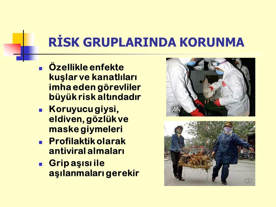 RİSK GRUPLARINDA KORUNMA Özellikle enfekte ku ş lar ve kanatlıları imha eden görevliler büyük risk altındadır Koruyucu giysi, eldiven, gözlük ve maske