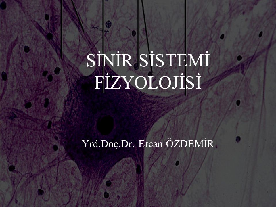 SİNİR SİSTEMİ FİZYOLOJİSİ Yrd.Doç.Dr. Ercan ÖZDEMİR