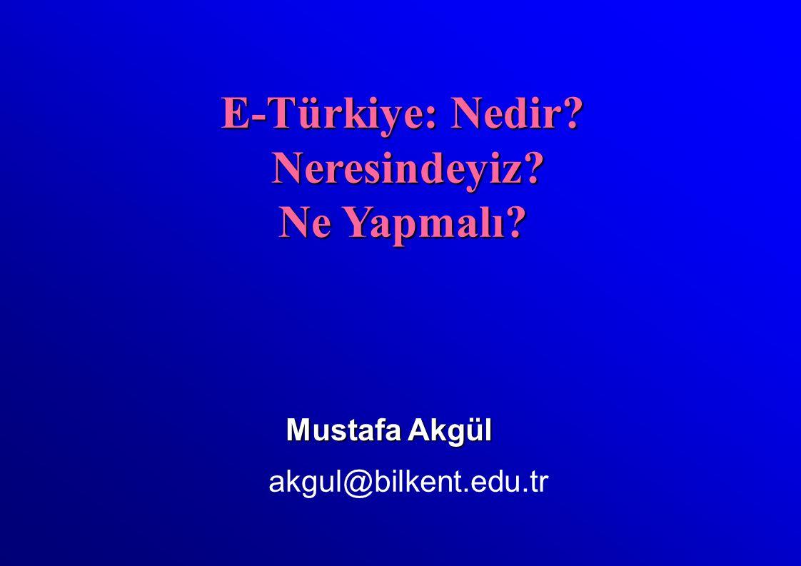 Mustafa Akgül akgul@bilkent.edu.tr E-Türkiye: Nedir Neresindeyiz Neresindeyiz Ne Yapmalı