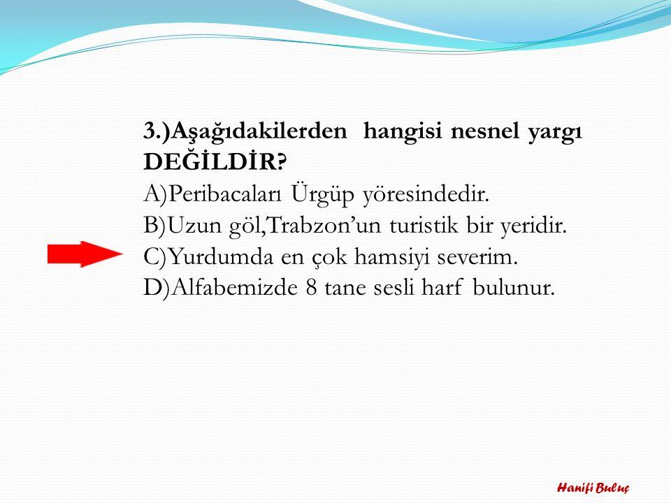 Hanifi Buluç 2.) Atatürk Ankara'yı ağaçlandırmak………… Çok çalışmıştır.