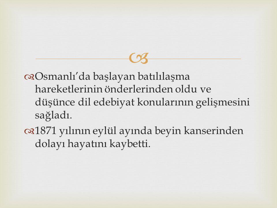   İstanbul'a 5 yıl sonra döndü ve Encümen-i Daniş'te görev aldı.  Tasvir-i Efkar ve Tercüman-ı Ahval gazetelerini çıkardı ve 1965 yılında tekrar Pa