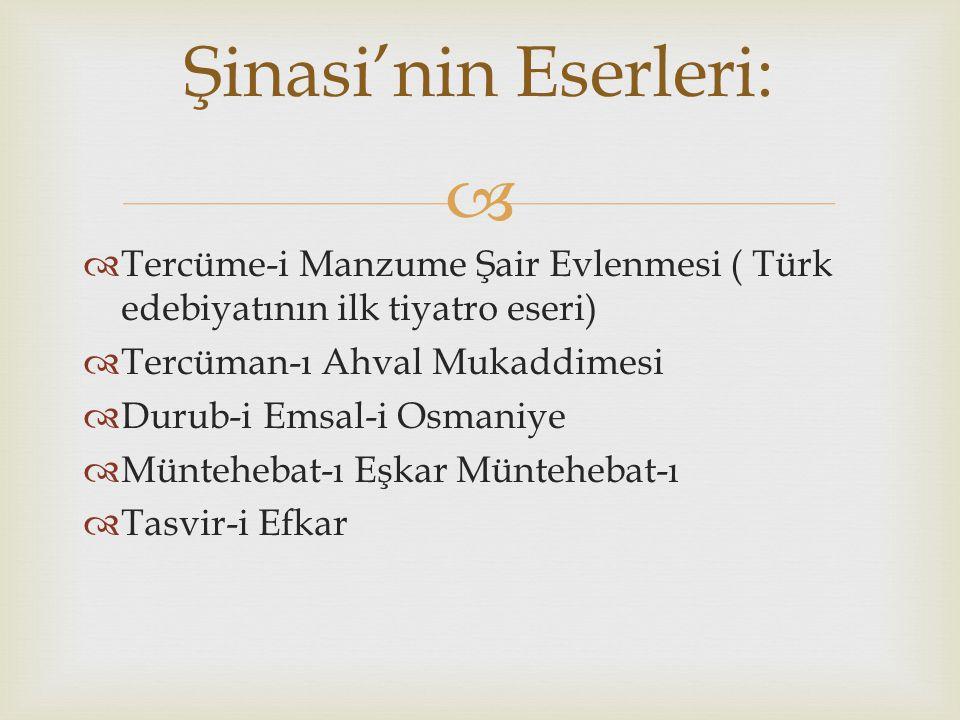   Osmanlı'da başlayan batılılaşma hareketlerinin önderlerinden oldu ve düşünce dil edebiyat konularının gelişmesini sağladı.  1871 yılının eylül ay