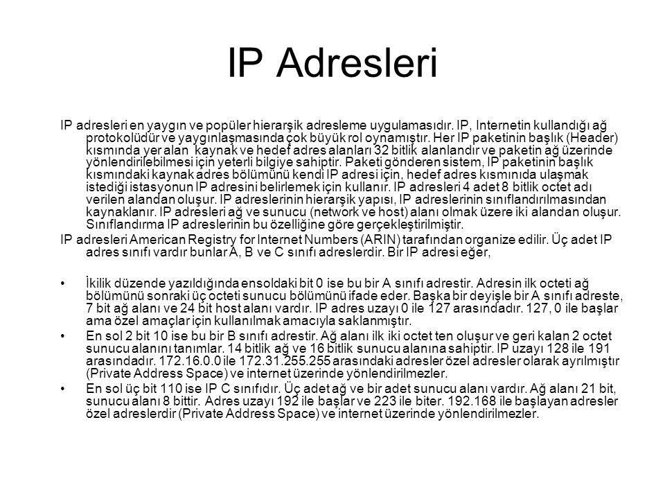 IP Adresleri IP adresleri en yaygın ve popüler hierarşik adresleme uygulamasıdır.
