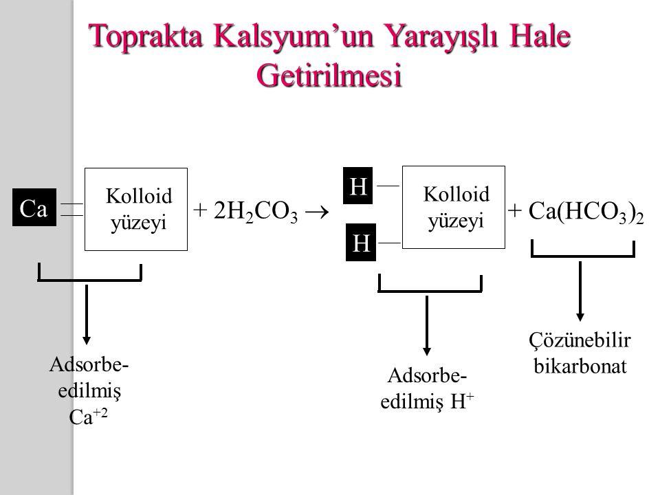Toprakta Kalsyum'un Yarayışlı Hale Getirilmesi Kolloid yüzeyi Ca + 2H 2 CO 3  H H + Ca(HCO 3 ) 2 Kolloid yüzeyi Adsorbe- edilmiş Ca +2 Çözünebilir bikarbonat Adsorbe- edilmiş H +