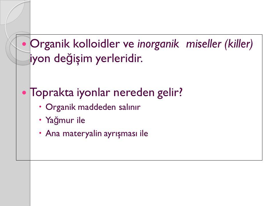 Organik kolloidler ve inorganik miseller (killer) iyon de ğ işim yerleridir.