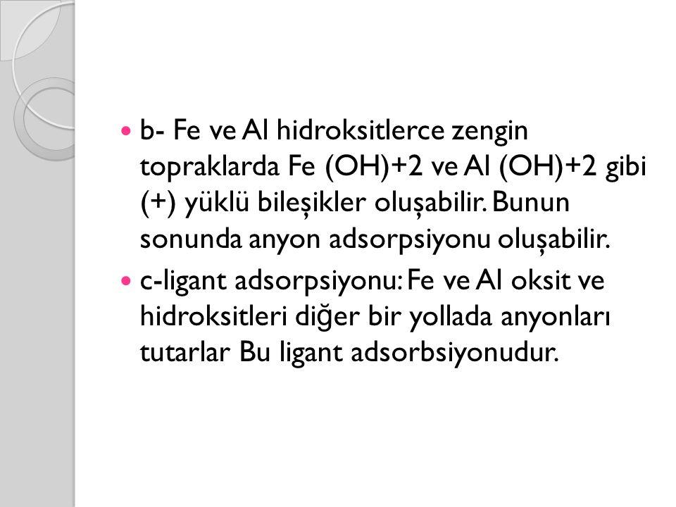 b- Fe ve Al hidroksitlerce zengin topraklarda Fe (OH)+2 ve Al (OH)+2 gibi (+) yüklü bileşikler oluşabilir. Bunun sonunda anyon adsorpsiyonu oluşabilir