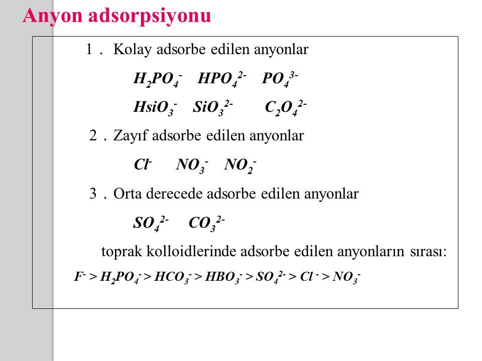 Anyon adsorpsiyonu 1 . Kolay adsorbe edilen anyonlar H 2 PO 4 - HPO 4 2- PO 4 3- HsiO 3 - SiO 3 2- C 2 O 4 2- 2 . Zayıf adsorbe edilen anyonlar Cl - NO 3 - NO 2 - 3 . Orta derecede adsorbe edilen anyonlar SO 4 2- CO 3 2- toprak kolloidlerinde adsorbe edilen anyonların sırası: F - > H 2 PO 4 - > HCO 3 - > HBO 3 - > SO 4 2- > Cl - > NO 3 -