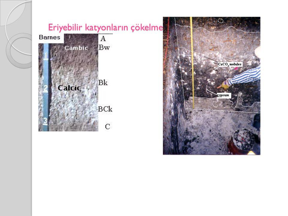 Eriyebilir katyonların çökelmesine örnek