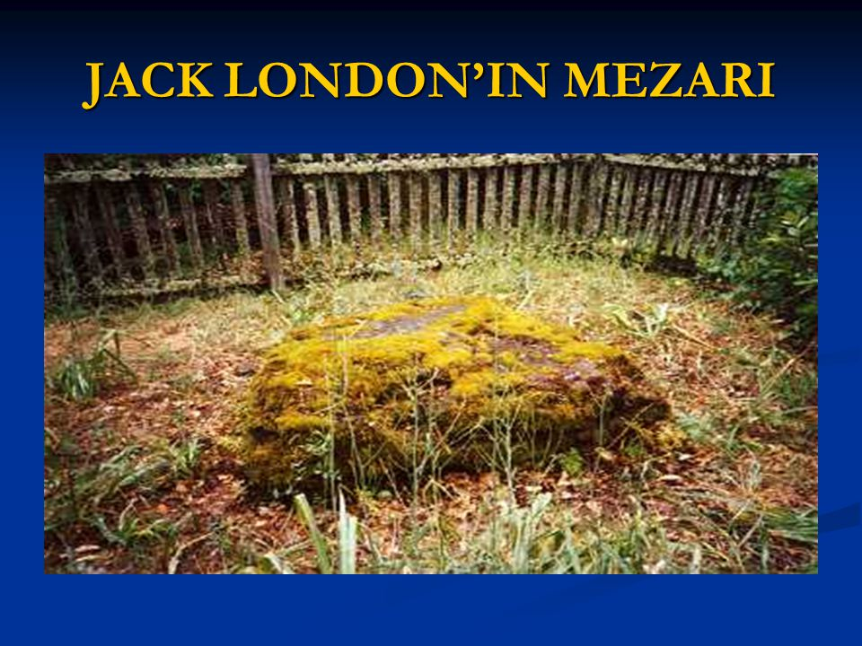 JACK LONDON'IN MEZARI