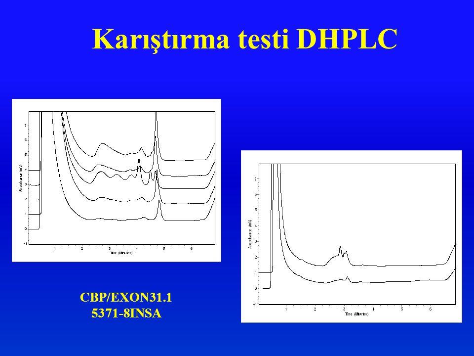 CBP/EXON31.1 5371-8INSA Karıştırma testi DHPLC