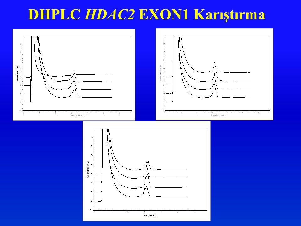DHPLC HDAC2 EXON1 Karıştırma