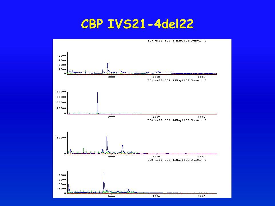 CBP IVS21-4del22